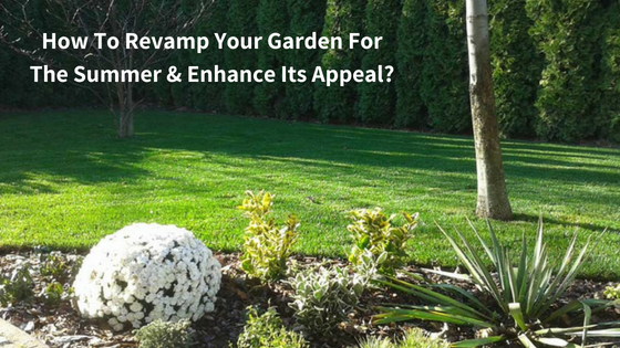 How To Revamp Your Garden For The Summer & Enhance Its Appeal?